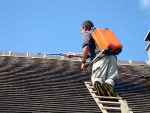 cout traitement hydrofuge de toiture Salernes